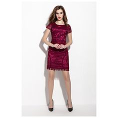 Burgundy Lace Overlay Round Neck Sheath Dress With Cap Sleeves Short Sleeve Dresses, Dresses With Sleeves, Lace Dresses, Lace Overlay, Sheath Dress, Dress To Impress, Cap Sleeves, Burgundy, Formal Dresses