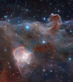 A una distancia de 1.600 años-luz de nuestro Sistema Solar, se encuentra la nebulosa Cabeza de Caballo (en la parte superior derecha). Además, también es visible la nebulosa NGC 2023 en la parte inferior izquierda. #astronomia #ciencia