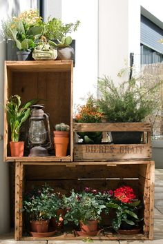 Balcony idea with wooden crates! plants on balcony, front porch plants, patio plants Patio Plants, Indoor Plants, Balcony Plants, Potted Plants, House Plants, Indoor Garden, Outdoor Gardens, Balcony Gardening, Small Herb Gardens