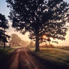 Warm early morning walks.