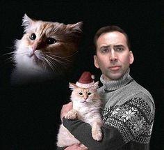 Nic's Cat - Nicolas Cage