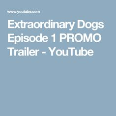 Extraordinary Dogs Episode 1 PROMO Trailer - YouTube