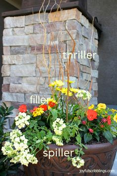 Helpful tips on putting a container garden together! @ Joyful Scribblings