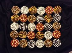 Safari Theme Cupcakes Safari Theme Cupcakes