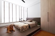 Platform bed design never thought of having a why you should home decor ideas for small room Inspired Homes, Home N Decor, Home, Home Bedroom, Platform Bedroom, Bedroom Design, Platform Bed Designs, Bed, Simple Bedroom