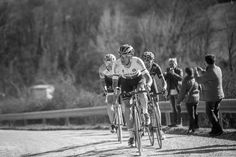 2015 Strade Bianche