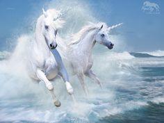 3D Fantasy Art Horses | Unicornios