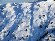 Avalanche prepared training is always good to have when skiing in the back country in BC #Revelstoke