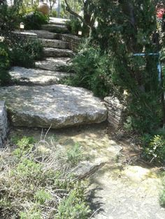 Garden Stairs, Stepping Stones, Outdoor Decor, Home Decor, Stair Risers, Decoration Home, Room Decor, Garden Steps, Home Interior Design