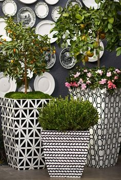 A corded-rope pattern wraps the Madison Black and White Planter in a refreshing twist of contemporary designing.   Frontgate: Live Beautifully Outdoors