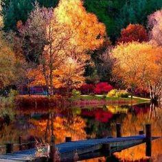 Beautiful Fall (64 pieces)