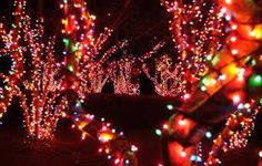 lake lanier lights httpwwwdiscoverlakelaniercom holiday lights christmas