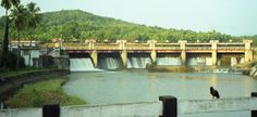 Neyyar Dam, Trivandrum