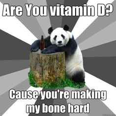 "Bad Pickup Line Panda: Are You Stuffed? - Funny memes that ""GET IT"" and want you to too. Get the latest funniest memes and keep up what is going on in the meme-o-sphere. Short Bread, Pedobear, Pick Up Lines Cheesy, Food Pick Up Lines, Affirmations Positives, Lol, Flirting Memes, Laugh Out Loud, The Funny"