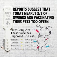 Canine vaccinations and how long they last. Don't over - vaccinate your dog!