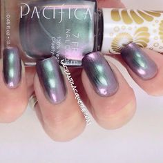 PACIFICA: Abalone