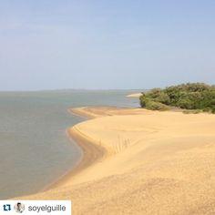 #Repost @soyelguille with @repostapp. ・・・ Isla de Zapara, estado Zulia. Medanos y Playa. #ElNacionalweb #ENTemas #loves_maracaibo #loves_venezuela #ig_zulia #ig_venezuela #insta_ve #venezuela_estrella #increiblevzla #vibravenezuela #photonovato #photooftheday #beautiful #beach  #instalovenezuela