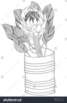 Coloring book page for adult and children. King Protea in zentangle style. Black and white colors. Adults coloring book page in vector. Flor Protea, Protea Art, Protea Flower, Adult Coloring Book Pages, Coloring Books, Colouring, Painting Patterns, Fabric Painting, Zentangle