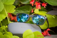 9b0031c88b2 Enchroma Colorblind Glasses Review  Illuminating But Are They Worth The  Money