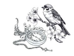 pocket watch bird tattoo