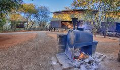 Mosetlha Bush Camp - a family run, rustic and unfenced bush camp situated in the heart of the magnificent Madikwe Game Reserve. Solar Powered Lanterns, Sun City, Wooden Cabins, The Donkey, Game Reserve, Wild Dogs, Well Thought Out, Survival Kit, Fresh Water