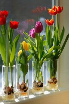 http://handwork-art.tumblr.com Materials: ✔ Tulip bulbs; ✔ decorative pebbles or river; ✔ wide vase; ✔water; Execution: 1. Fill the clear glass vase is prepared with colored stones about a quarter or...