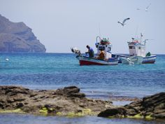 Fishing boats in Cabo de Gata