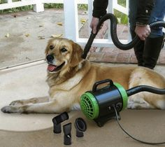 Pet Styling System – $100