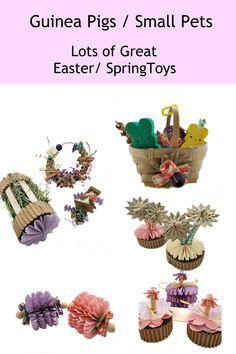 Looking for Springtime Cage Decor and fun chews for Guinea Pigs or other Small Pets?