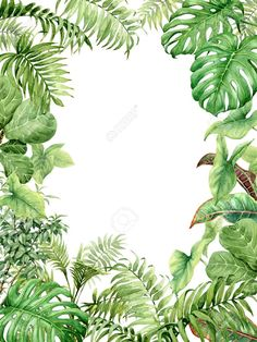 Hand drawn branches and leaves of tropical plants. Natural green background with space for text. Tropical Leaves, Tropical Plants, Tattoo Plant, Jungle Theme Birthday, Tropical Bedrooms, Tropical Background, Unique Drawings, Tropical Wallpaper, Plant Drawing