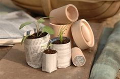 Ellen Mary Gardening. Burgon & Ball Eco Pot Maker Fabulous way to make your own seedling pots from nothing but newspaper! Eco friendly, cheap, easy & a great gift! #gardening #gifts #gardenaccessories #burgonandball