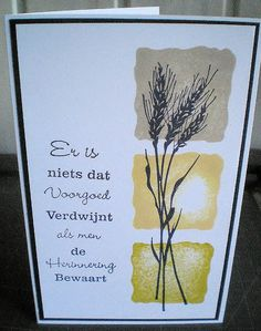 rouw by toscania, via Flickr