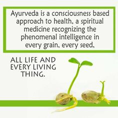 Ayurveda is a consciousness based approach to health, a spiritual medicine recognizing the phenomenal intelligence in every grain, every seed, all life and every seed. Ayurvedic Home Remedies, Ayurvedic Healing, Ayurvedic Herbs, Ayurvedic Medicine, Ayurveda, Ayurvedic Recipes, Ayurvedic Body Type, Metabolism Miracle