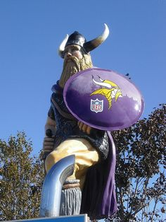 The Vikings usually stink but we still LOVE them! Equipo Minnesota Vikings, Minnesota Vikings Football, Best Football Team, Football Fans, Feeling Minnesota, Minnesota Home, Duluth Minnesota, Roadside Attractions, Down South