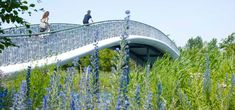 West 8 Urban Design & Landscape Architecture / projects / Máximapark (formerly Leidsche Rijn Park)