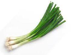 My vegetable garden - green onions