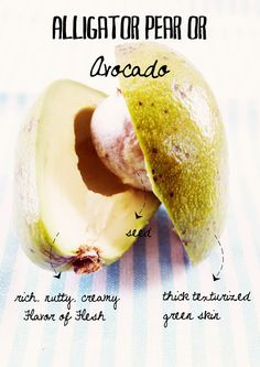 What Liberty Ate - http://whatlibertyate.com/2011/05/the-anatomy-of-exotic-fruits-avocado/