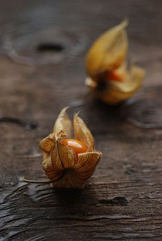 Cape Gooseberries - Love these! They were always easy to find in Provence but I've yet to see them in Paris.