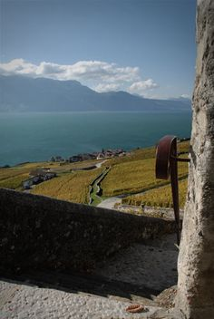 Lavaux, Chexbres. Vevey, The Mont, Lausanne, Rocky Mountains, Switzerland, Italy, France, Travel, Beautiful