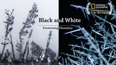 A film about the growth of white silver and black lead during metal displacement reactions. All footages were captured with a microscope. This film is part o. Things Under A Microscope, Cool Animations, Motion Design, National Geographic, Metallica, Chemistry, Science, Black And White, Silver
