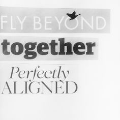 fly beyond together perfectly aligned // summertime mix