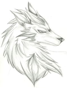 Drawings of wolves wolf head drawing, wolf drawing easy, cute fox d Cool Wolf Drawings, Wolf Head Drawing, Cute Fox Drawing, Realistic Animal Drawings, Anime Wolf Drawing, Anime Sketch, Art Drawings Sketches, Easy Drawings, Pencil Drawings