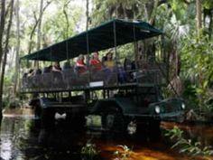 Florida's Captivating Wildlife Forever Florida, Sanibel Island, Tour Tickets, Family Events, Orlando Florida, Natural Wonders, Safari, Things To Do, Swamp Thing