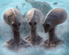 5 Alien Species in Contact With Earth Right Now | The Controversial Files