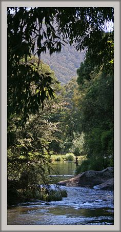 Yarra River in Warburton, Victoria_ East Australia