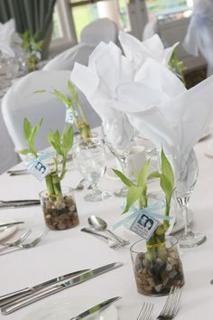 ... {Wedding Favours} Plants & Seeds | The Willow Tree Experience