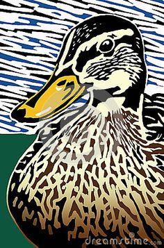 duck pictures mallard lino - Google Search
