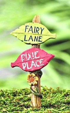 "Miniature Garden Sign ""Fairy Lane/Pixie Place"" 37 DIY Miniature Fairy Garden Ideas to Bring Magic Into Your Home Mini Fairy Garden, Fairy Garden Houses, Gnome Garden, Fairy Garden Furniture, Kobold, Fairy Tree, Fairy Crafts, Ideias Diy, Fairy Garden Accessories"