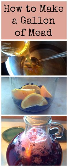 How to Make a Gallon of Mead ~ Blueberry Orange honey wine!  www.growforagecookferment.com