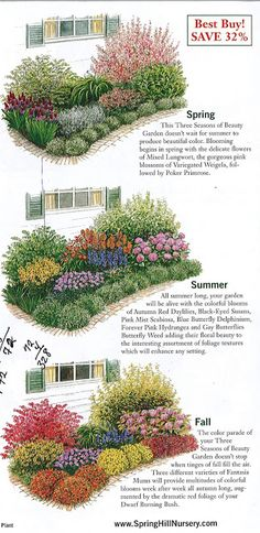 The Urban Domestic Diva: GARDENING: Garden plan a week, Week 2, Three Seasons of Beauty -  Breakfast room bed